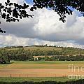 British Countryside Sussex Uk by Julia Gavin