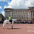 British Royal Guards Riding On Horse And Perform The Changing Of The Guard In Buckingham Palace by Michal Bednarek