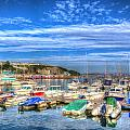 Brixham Marina Devon England Uk On Calm Summer Day With Blue Sky by Michael Charles