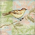 Brocade Songbird I by Paul Brent