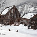 Broken Barn by Patricia Novack