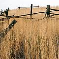 Broken Down Fence by Robert VanDerWal