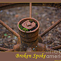 Broken Spoke by Tikvah's Hope