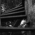 Broken Stairs by Jennifer Ancker