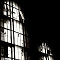 Broken Windows by Heather Allen
