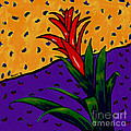 Bromeliad by Dale Moses
