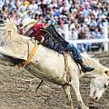 Bronc Rider 001 by Dean Wittle