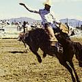 Bronco Rider by Gary De Capua