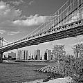 Brooklyn Beauty by Tony Ambrosio