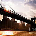 Brooklyn Bridge And Skyline Manhattan New York City by Sabine Jacobs