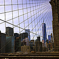 Brooklyn Bridge View by Madeline Ellis
