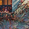 Brooklyn In Fall 2 by Rosie McCobb