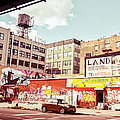 Brooklyn - New York City - Williamsburg by Vivienne Gucwa
