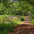 Brookside Garden Walk by Eva Kaufman