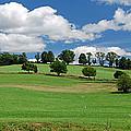 Brookview Farm