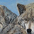 Brother And Sister Wolves by Cecile Fortier