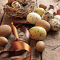 Brown And Yellow Eggs With Ribbons For Easter by Sandra Cunningham