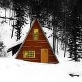 Brown Cabin  by Isaac Silman