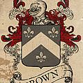 Brown Coat Of Arms - Scotland by Daniel Clark