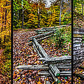Brown County Park by Ron Pate