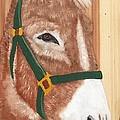 Brown Donkey On Cedar by Debbie LaFrance