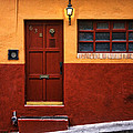 Brown Door In Mexico by Carol Leigh