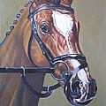 Brown Horse by Sankaranarayanan