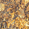 Brown Stone Abstract by Niteen Kasle