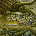 Brown Trout Log by Jon Q Wright