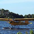 Brown's Piper Cub 005  by Chris Mercer