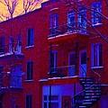 Brownstones In Winter 6 by Carole Spandau