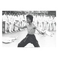 Bruce Lee - Triumphant by Brand A