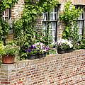 Brugge Balcony by Carol Groenen