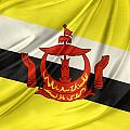 Brunei Flag by Les Cunliffe
