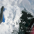 Brushing Winter Away by Ann Horn