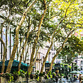 Bryant Park Midtown New York Usa by Liz Leyden