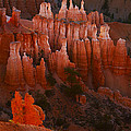 Bryce Canyon 17 by Ingrid Smith-Johnsen