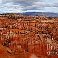Bryce Canyon Overlook by Catherine Sherman