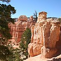 Bryce Canyon  Red Rocks by Christiane Schulze Art And Photography