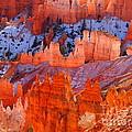 Bryce Canyon Utah by Jennifer Craft