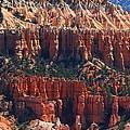 Bryce Canyon Utah by Tom Janca