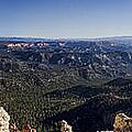 Bryce Canyon Vista by Heather Applegate
