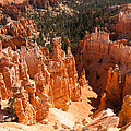 Bryce Canyon Vista by John M Bailey