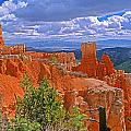 Bryce Canyon's Agua Canyon by Rich Walter