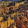 Bryce Glow Panorama by Fred Hahn
