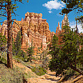 Bryce Hills 2 by Richard J Cassato