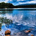 Bubb Lake In The Adirondacks by David Patterson