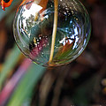 Bubble Cocoon         by Kaye Menner