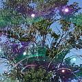 Bubble Tree by Ernie Echols