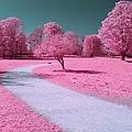 Bubblegum Bliss by Luke Moore